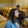 Athens Wine Tasting Tour