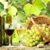 Chania Wine Tasting